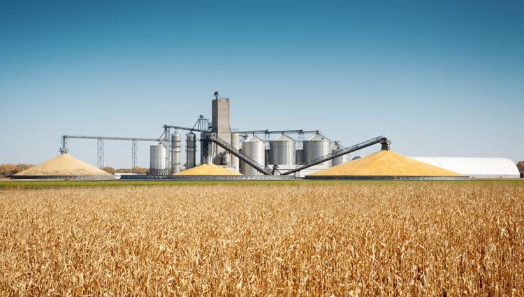 Testing et Experience utilisateurs dans le secteur de l'Agro-alimentaire